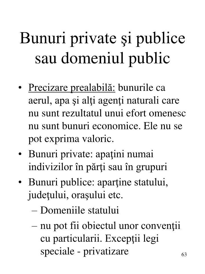 Bunuri private şi publice sau domeniul public