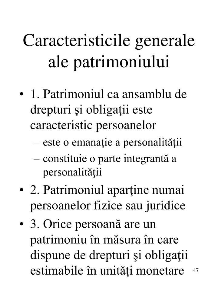Caracteristicile generale ale patrimoniului