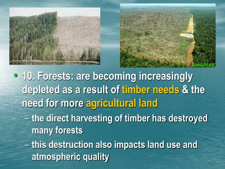 10. Forests: are becoming increasingly depleted as a result of