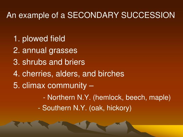 An example of a SECONDARY SUCCESSION