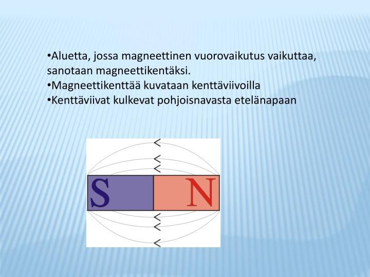 Aluetta, jossa magneettinen vuorovaikutus vaikuttaa,