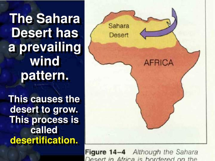 The Sahara Desert has a prevailing wind pattern.