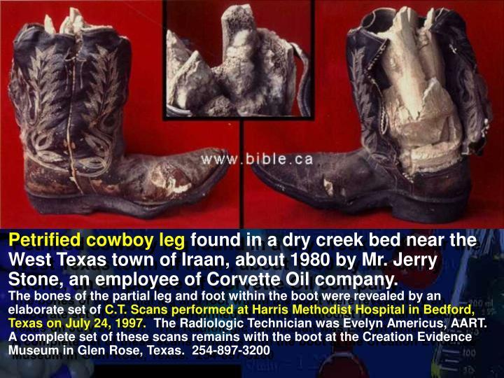 Petrified cowboy leg