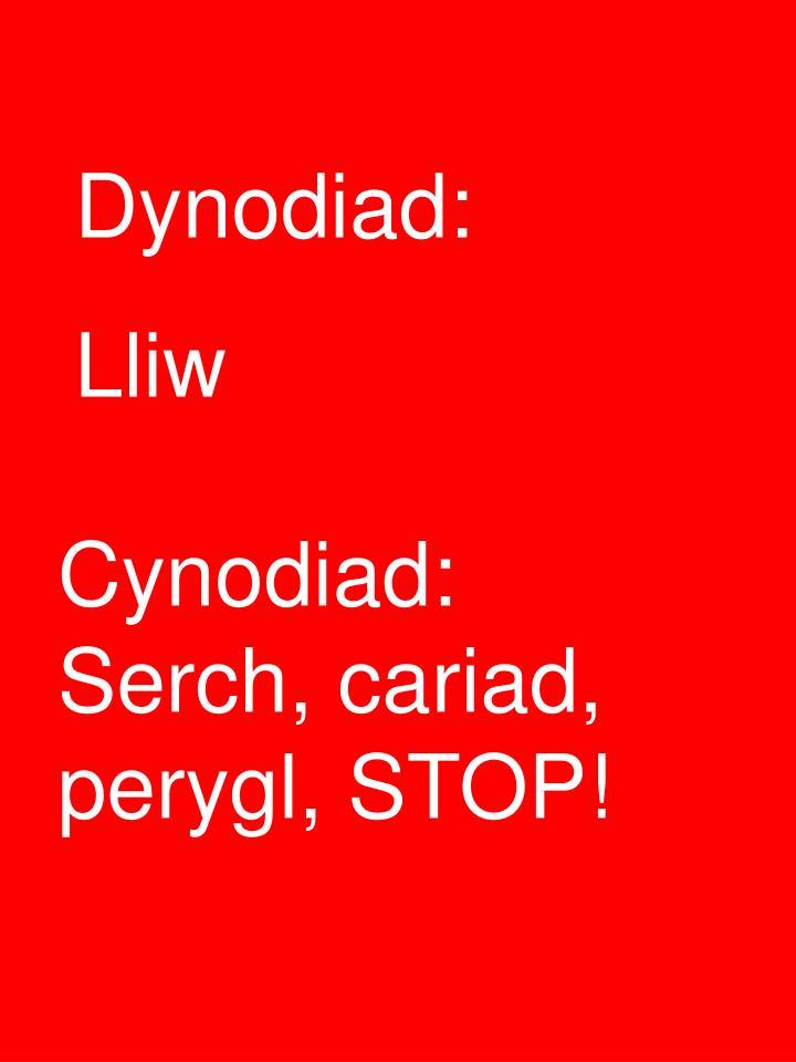 Dynodiad:
