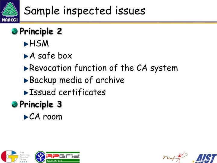 Sample inspected issues