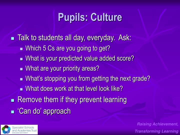 Pupils: Culture