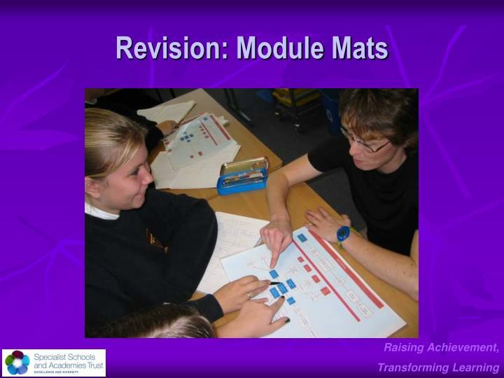 Revision: Module Mats