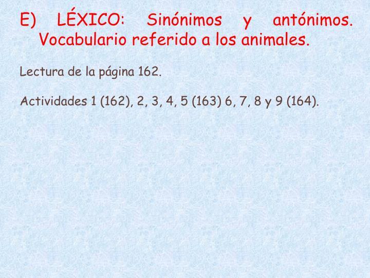 E) LÉXICO: Sinónimos y antónimos. Vocabulario referido a los animales.
