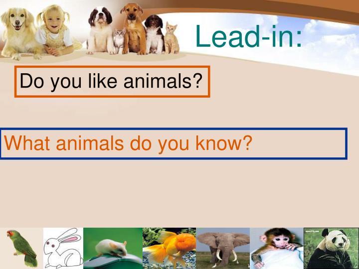 Lead-in: