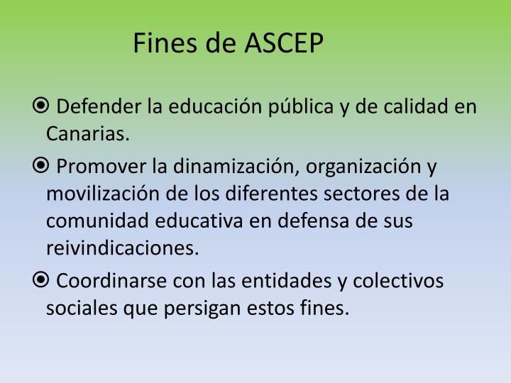 Fines de ASCEP