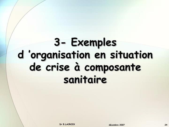 3- Exemples  d'organisation en situation de crise à composante sanitaire