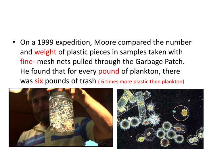On a 1999 expedition, Moore compared the number and