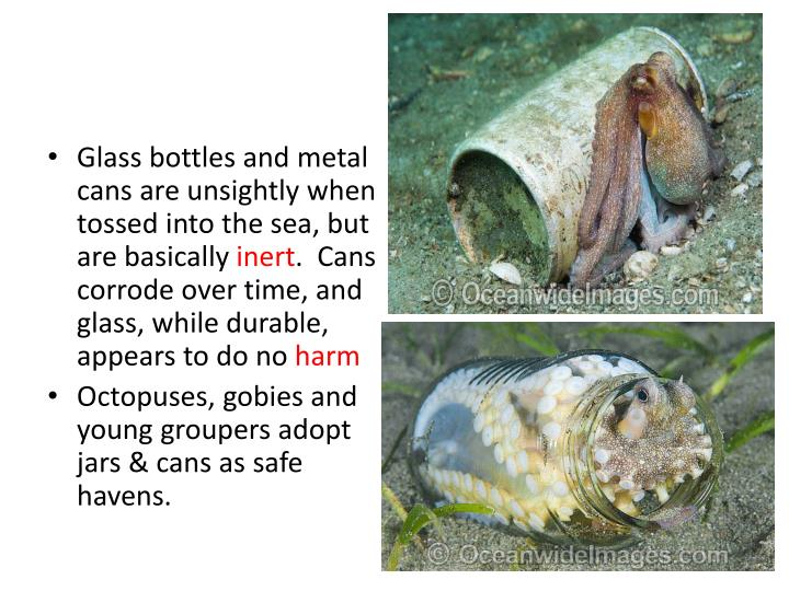 Glass bottles and metal cans are unsightly when tossed into the sea, but are basically
