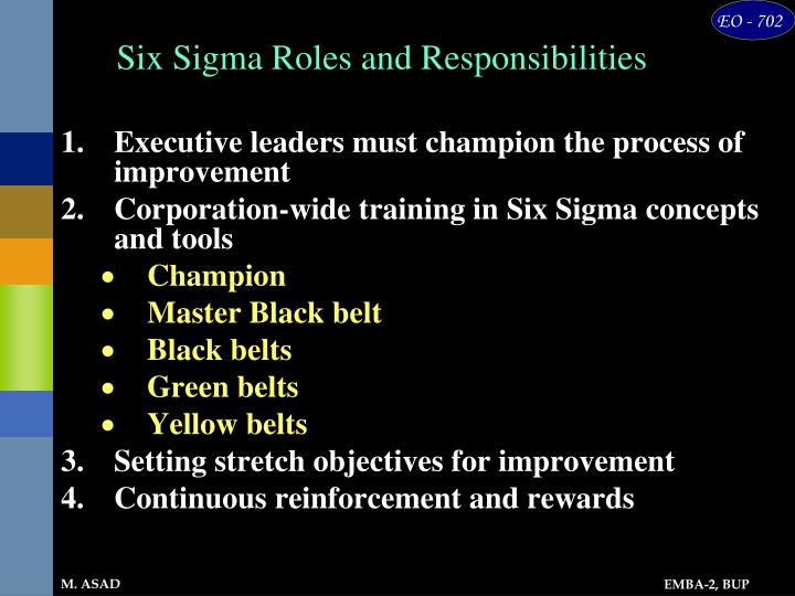 Six Sigma Roles and Responsibilities
