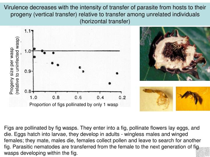Virulence decreases with the intensity of transfer of parasite from hosts to their progeny (vertical transfer) relative to transfer among unrelated individuals