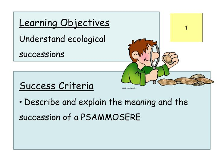 a better understanding of the process of ecological succession