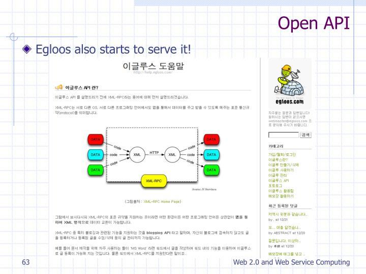 Open API