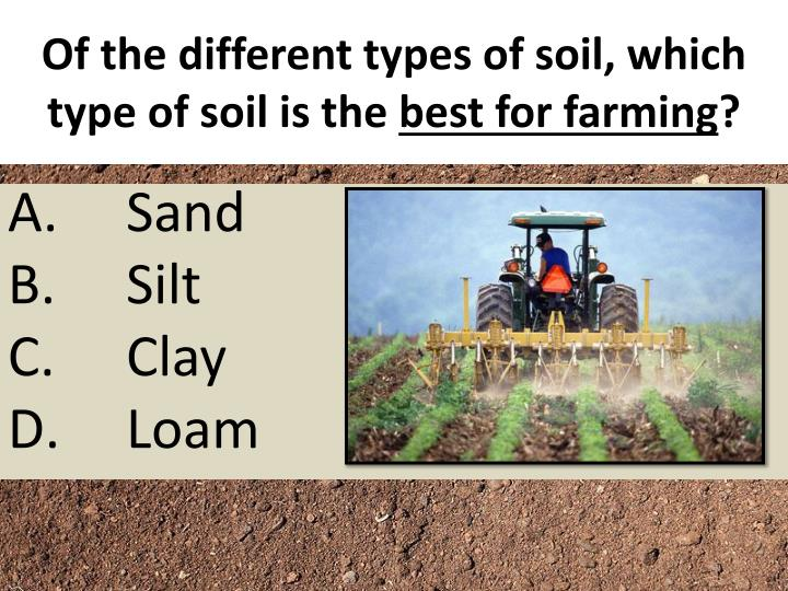Of the different types of soil, which type of soil is the