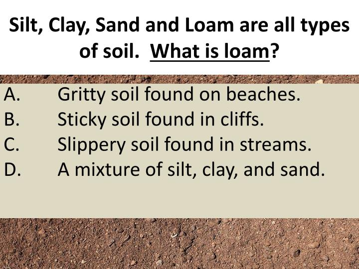Silt, Clay, Sand and Loam are all types of soil.