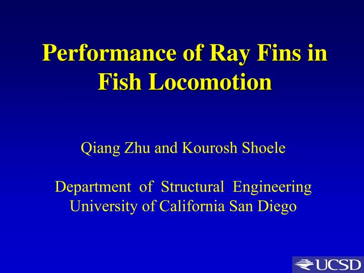 Performance of ray fins in fish locomotion
