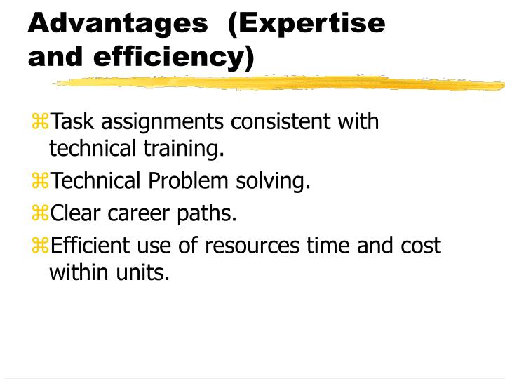 Advantages  (Expertise and efficiency)