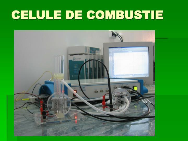 CELULE DE COMBUSTIE