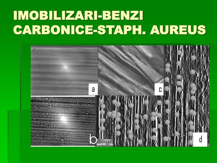 IMOBILIZARI-BENZI CARBONICE-STAPH. AUREUS