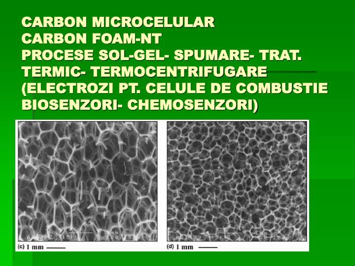 CARBON MICROCELULAR