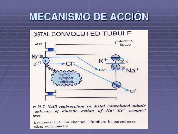 MECANISMO DE ACCIÓN