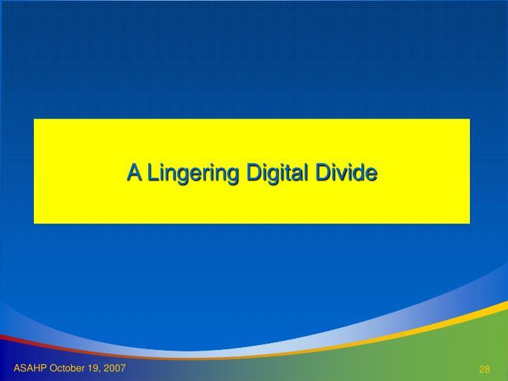 A Lingering Digital Divide