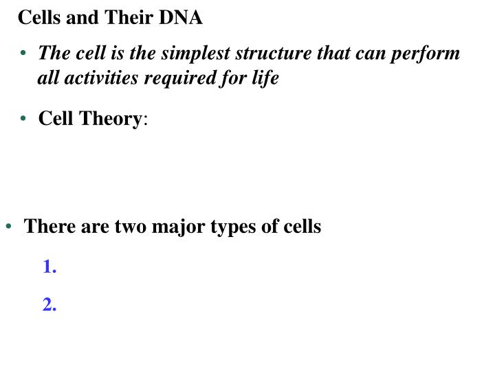 Cells and Their DNA
