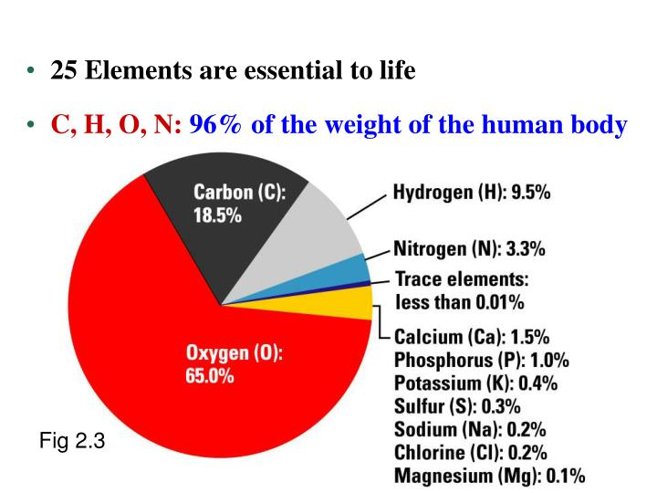 25 Elements are essential to life