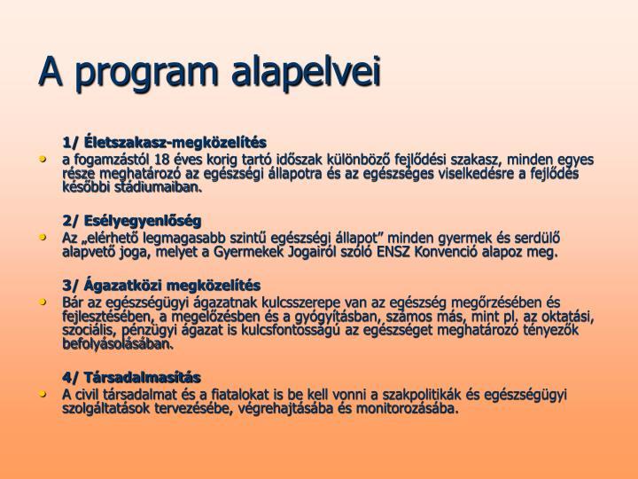 A program alapelvei