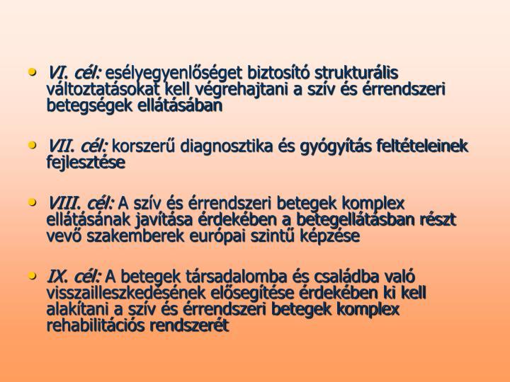 VI. cél: