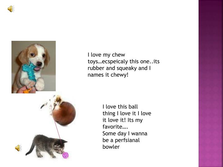 I love my chew toys…
