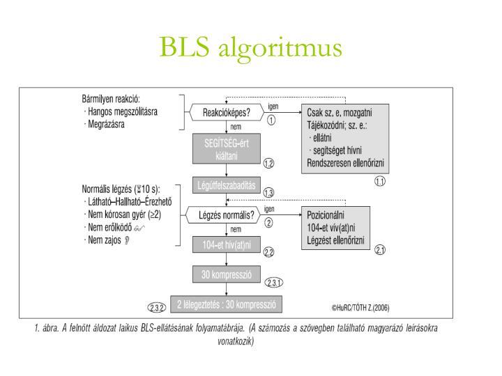BLS algoritmus