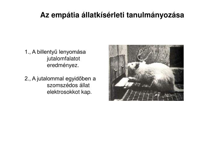Az empátia állatkísérleti tanulmányozása