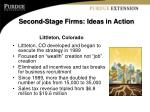 second stage firms ideas in action