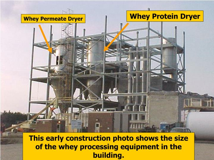 Whey Protein Dryer