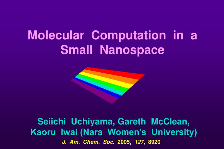 Molecular  Computation  in  a  Small  Nanospace