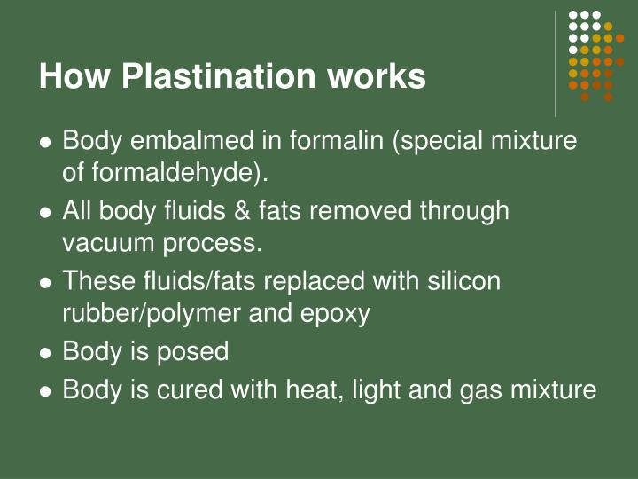 How Plastination works