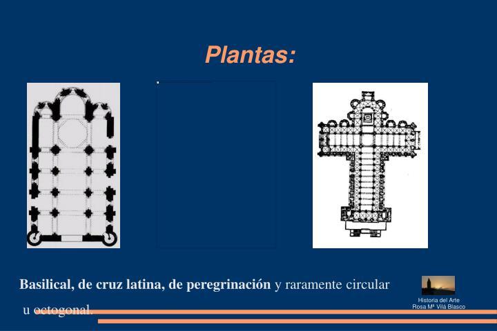 Plantas:
