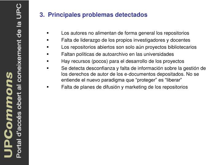 3.Principales problemas detectados