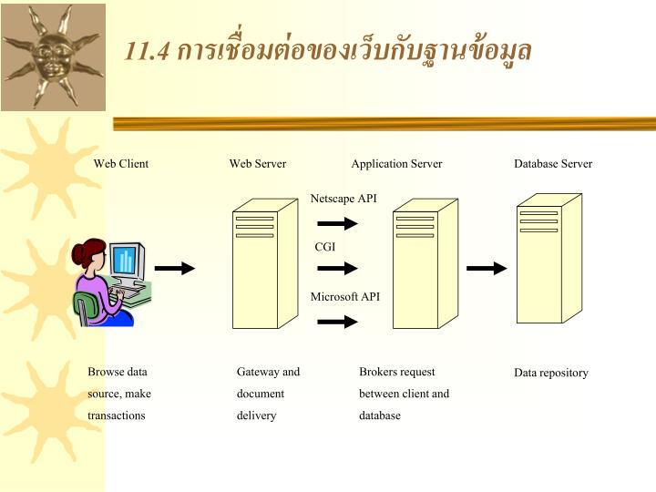 11.4 การเชื่อมต่อของเว็บกับฐานข้อมูล