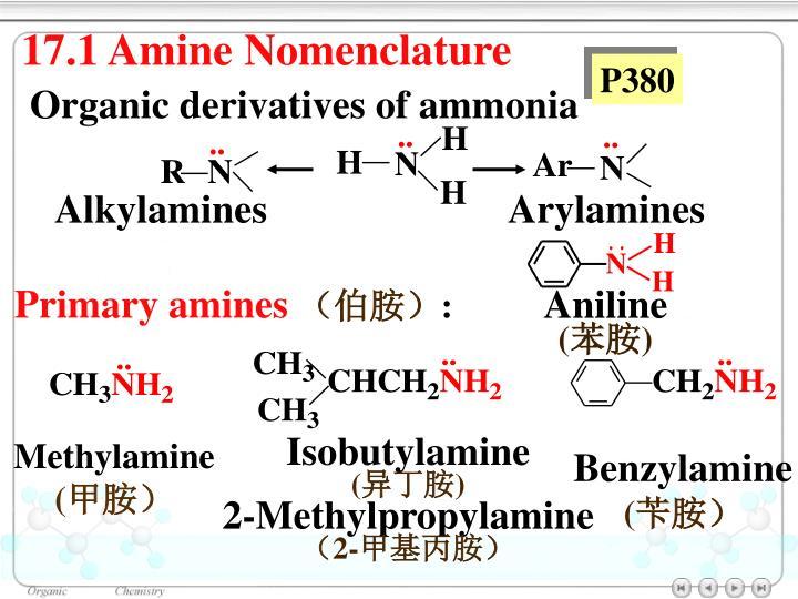 17.1 Amine Nomenclature