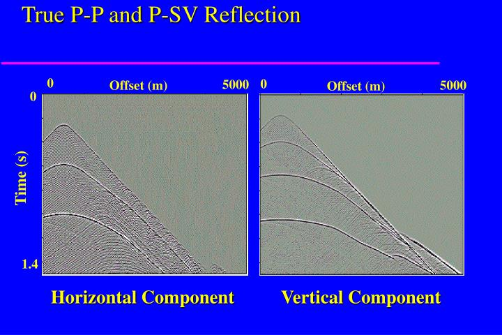 True P-P and P-SV Reflection