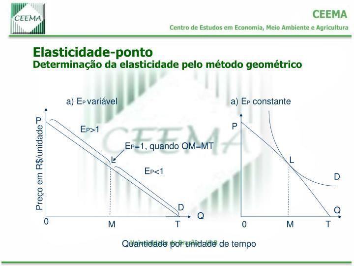 Elasticidade-ponto