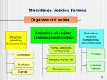 metodin s veiklos formos