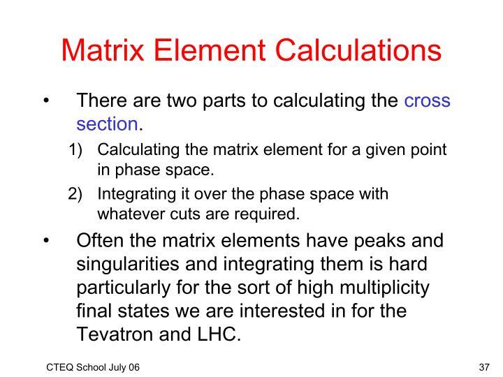 Matrix Element Calculations