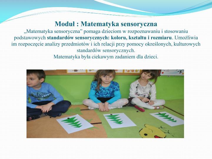 Moduł : Matematyka sensoryczna